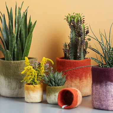 Aveva Flower Pots, $47